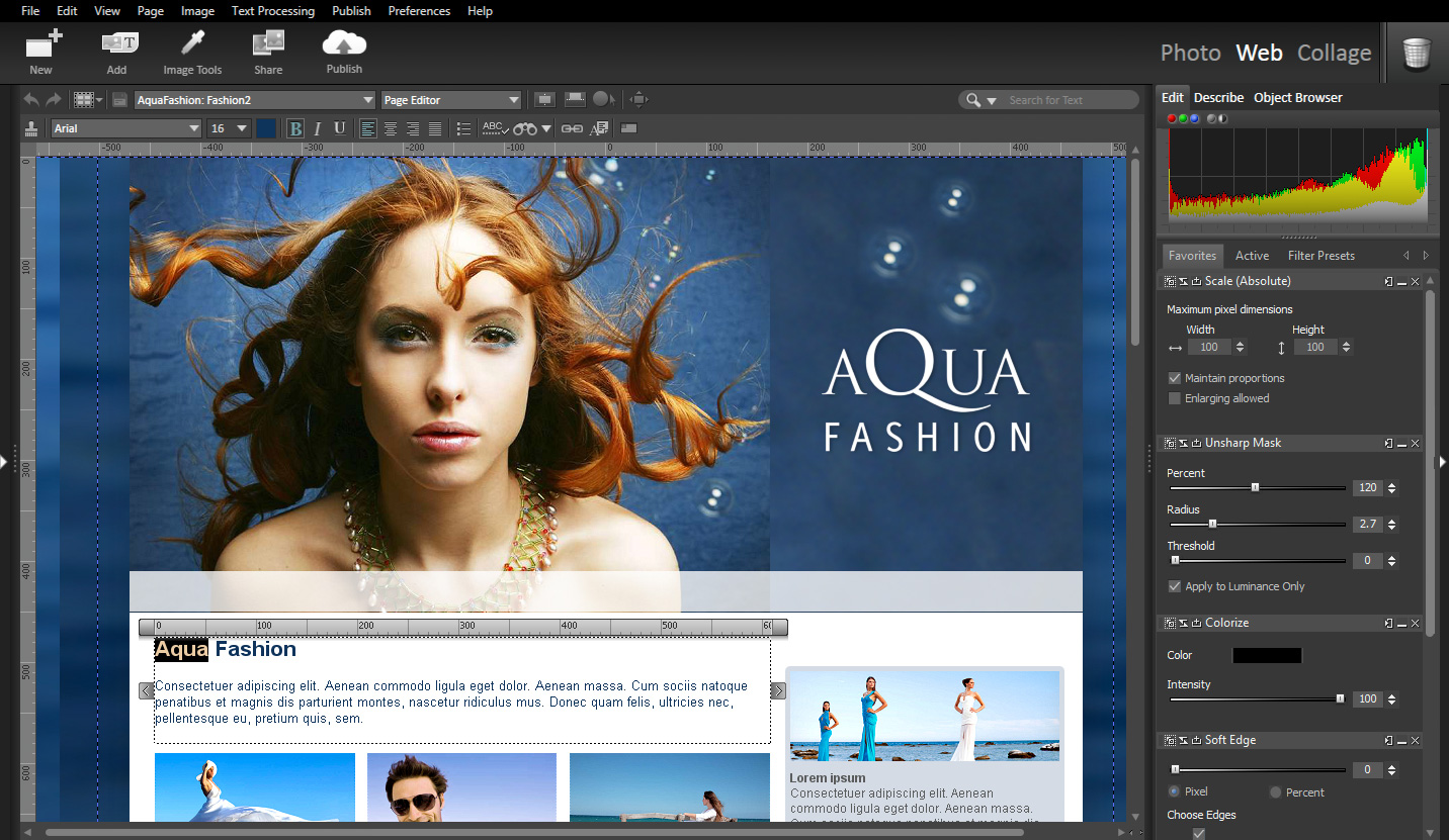 StudioLine Web Designer Screen shot